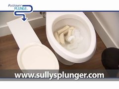 Thumbnail of Better than a toilet plunger