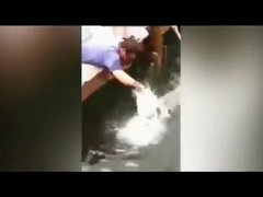 Thumbnail of Fish Grabs Man's Arm for Dangling it above Water
