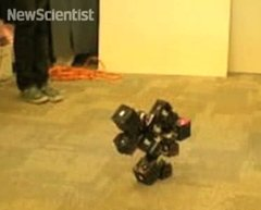 Thumbnail of Robot that reassembles itself when kicked apart