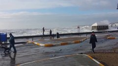 Thumbnail of Woman and dog hit by surprise wave in Tramore Co Waterford