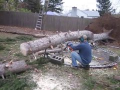 Thumbnail of Cutting up a tree