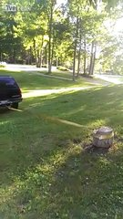 Thumbnail of Tree trunk removal with an SUV