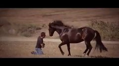 Thumbnail of The Horse Whisperer