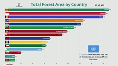 Thumbnail of All Countries Total Forest Area Comparison (2019)