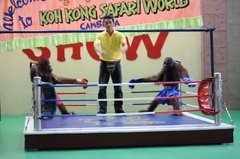 Thumbnail of Orangutan Muay Thai match