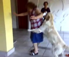 Thumbnail of Dog loves granny