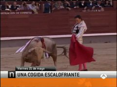 Thumbnail of Spanish bullfighter gored