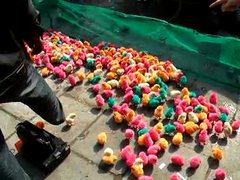 Thumbnail of Colored chickens in China