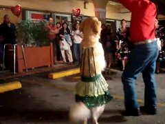 Thumbnail of Dancing Merengue Dog.