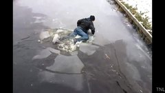 Thumbnail of Winter Fails 2011